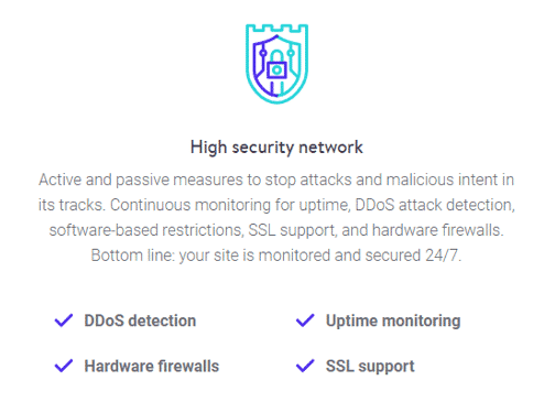 Kinsta Security