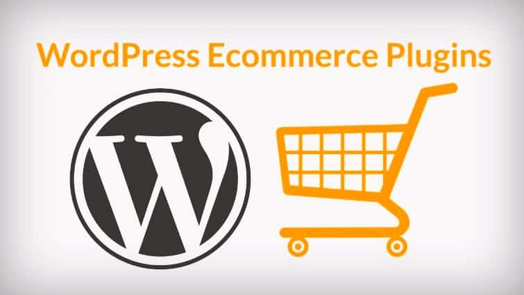 WordPress Plugins eCommerce website