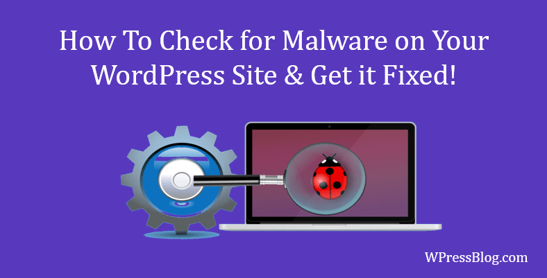 Check for Malware on Your WordPress Site & Get it Fixed